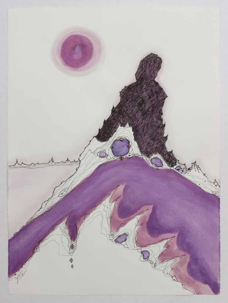 DePuy-John-Formations Sonora Desert-2011-edit